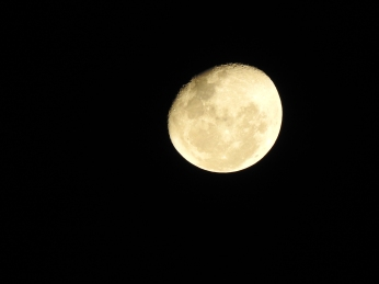 Moon Close